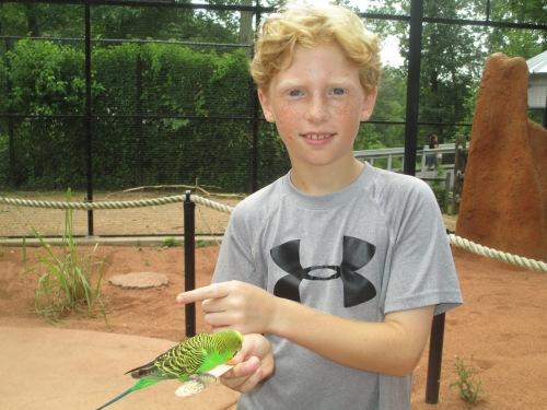 Aden feeds a bird at the zoo