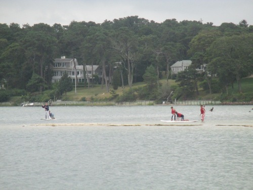 Paddleboarding on Tashmoo Pond, near Vineyard Haven, Martha's Vineyard on carpoolcandy.com