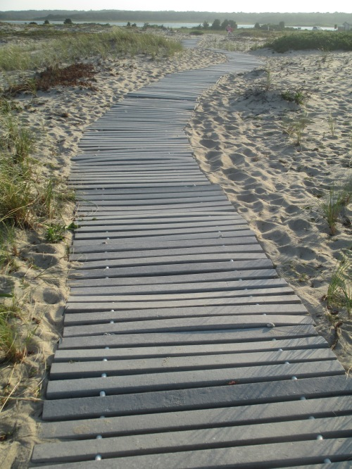 Beach path in Chappaquiddick, Martha's Vineyard on carpoolcandy.com