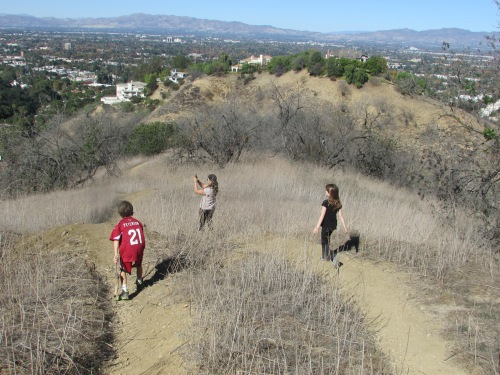 California Thanksgiving Tree People hike on carpoolcandy.com