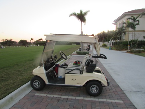 Golf cart at Florida gated community grandparents visit on carpoolcandy.com